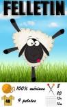 FELLETIN | FONTY - Grosse laine 100% mérinos - Aiguille 8 à 10