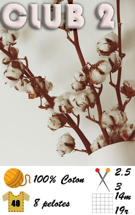 CLUB 2 by Fonty - fil de coton à tricoter - aiguilles 2.5 à 3