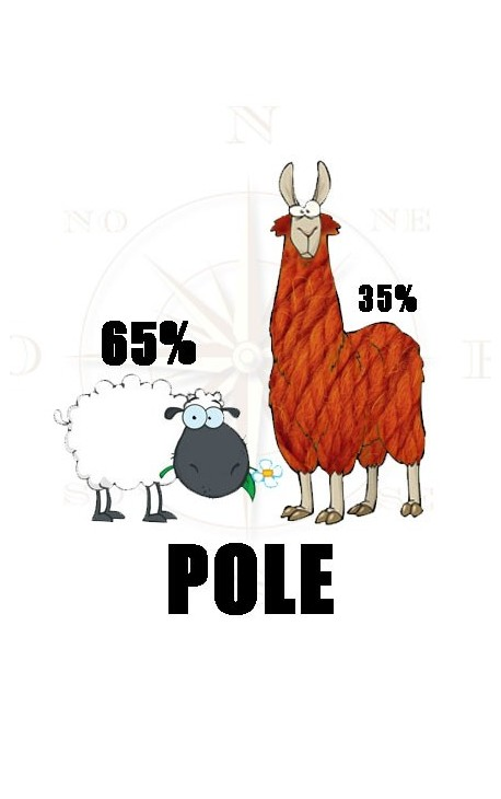 Pole by Fonty