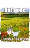 Kidopale - Fonty